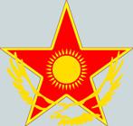 Kazakhstan roundel