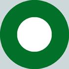 Pakistan roundel