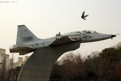 Northrop F-5B Freedom Fighter 42-117 Republic of Korea Air Force, Boramae Park, Seoul
