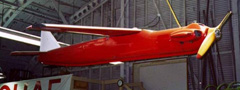 Shelduck D1 Drone