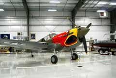 Curtiss P-40N Warhawk NL1195N 42-106396 Warhawk Air Museum
